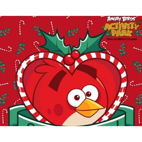 Сертификат в Парк активного отдыха Angry Birds Activity Park для взрослого и ребенка