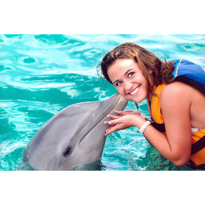 Плавание с дельфинами в Санкт-Петербурге
