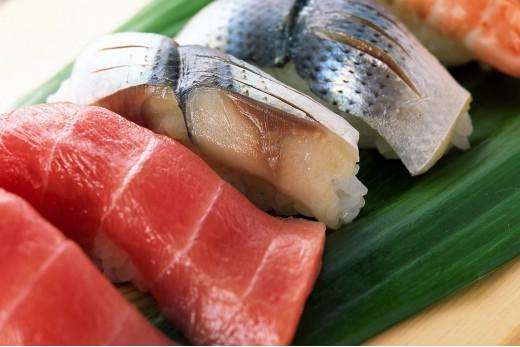 «Энциклопедия рыбы»